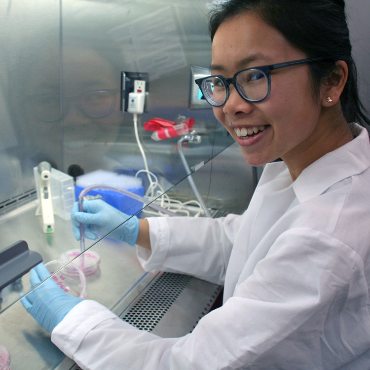 Photo of an Asian female undergraduate student wearing PPE and working in a fume hood in a wet laboratory.
